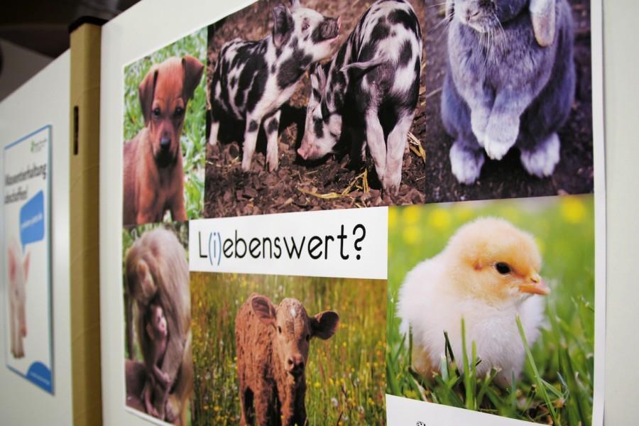 """Poster """"L(i)ebenswert?"""" mit verschiedenen Tierarten"""