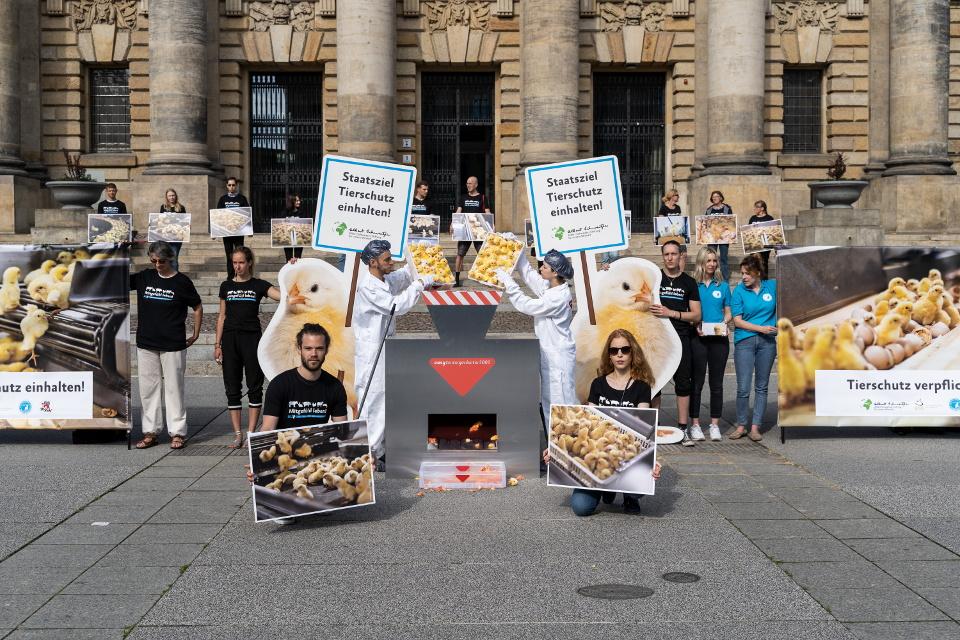 Aktive demonstrieren vor dem Verwaltungsgericht in Leipzig.